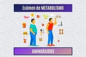 Paradigmia_Test_Metabolismo_Aminoacidos