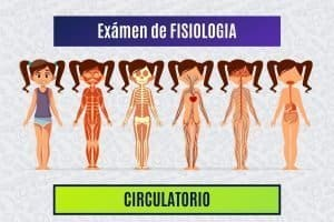 Paradigmia_Test_Fisiologia_Circulatorio