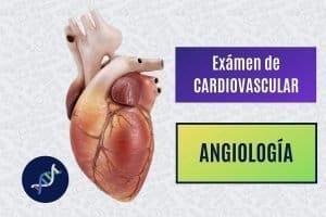 Paradigmia_Test_cv_angiologia