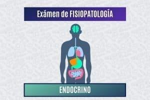 Paradigmia_Test_fisiopatologia_endocrino