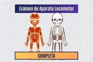 Paradigmia_Test_Locomotor_Completo
