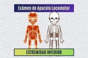 Paradigmia_Test_Locomotor_Extremidad_Inferior