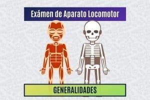 Paradigmia_Test_Locomotor_Generalidades