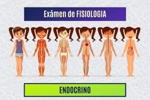 Paradigmia_Test_Fisiologia_Endocrino