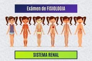 Paradigmia_Test_Fisiologia_Renal